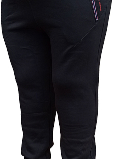 зимние спортивные брюки с начёсом Ramon Miele